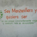 Manzanillo biomimmicry project, 1