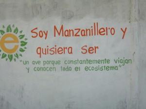 Manzanillo biomimmicry project, 1