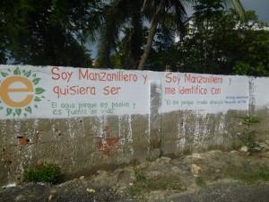 Manzanillo biomimmicry project, 2