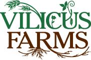 Vilicus logo