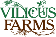 logo for Vilicus Farms
